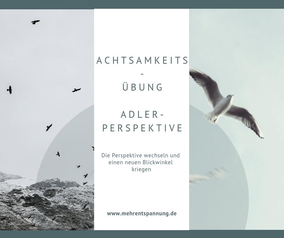Achtsamkeitsuebung-Adlerperspektive