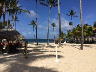 Urlaubsentspannung-Palmen und Strand-IMG_2616