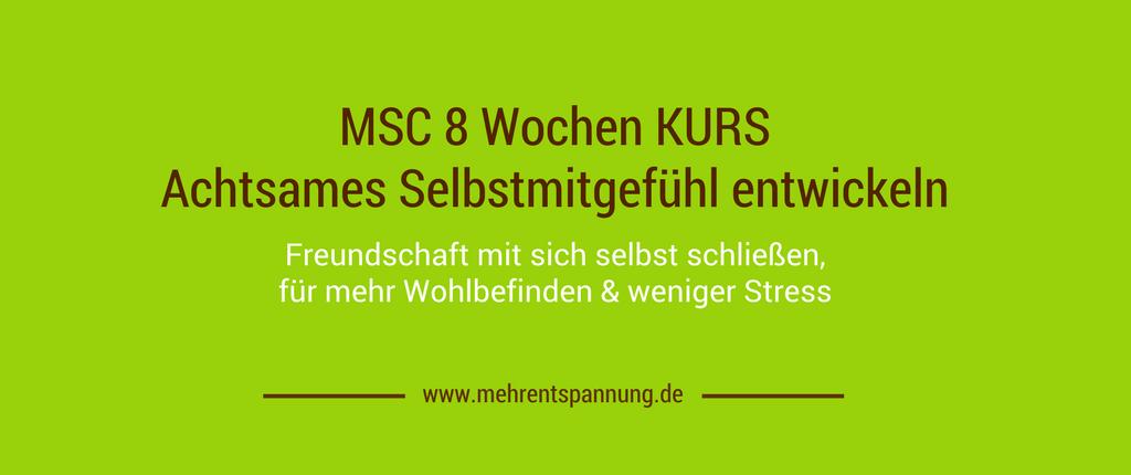MSC Kurs München