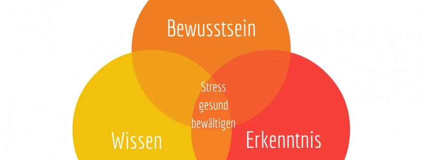 Stresskompetenz ist ...