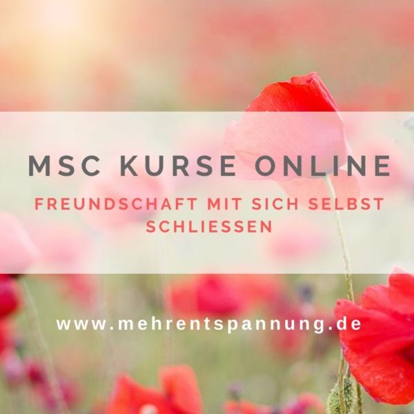 MSC-Kurse-online