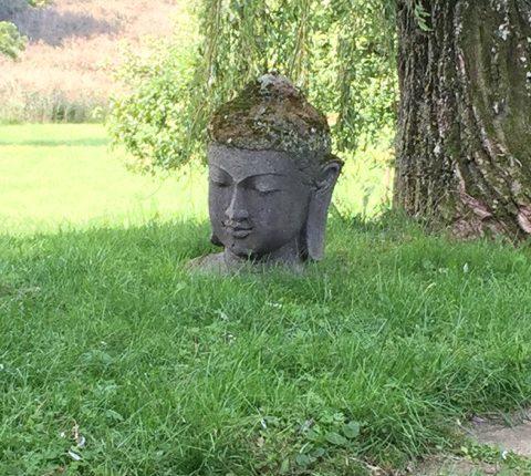 Garten - Zen Kloster Eisenbuch