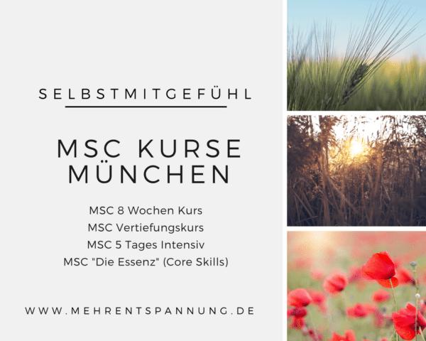 MSC Kurse Muenchen - Termine 1. Halbjahr