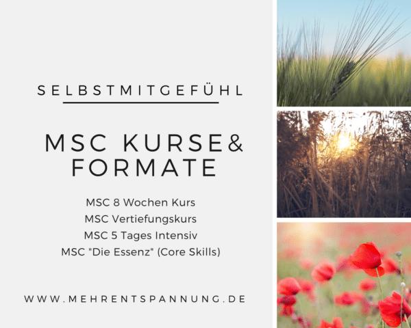 Selbstmitgefühl Kurse München - Übersicht