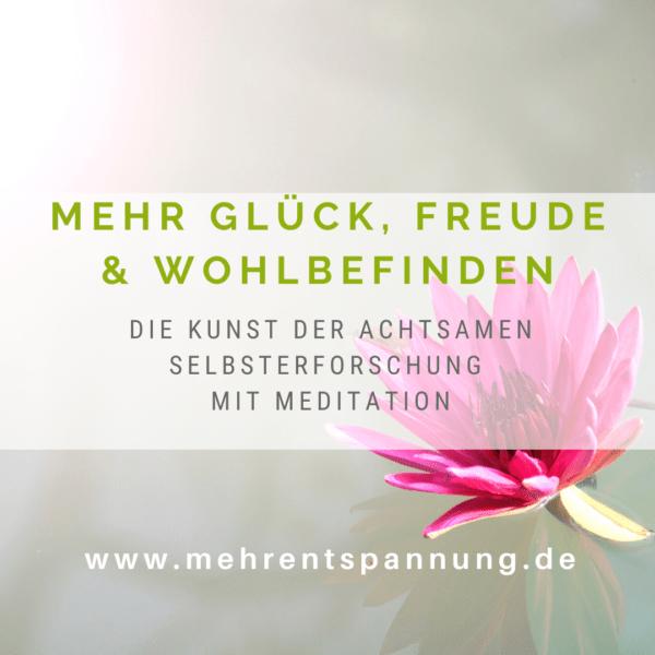 online-meditationskurs ab 07.10.20